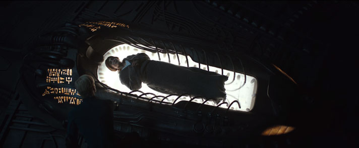 エンジニアの母星まで冷凍睡眠に入るエリザベス